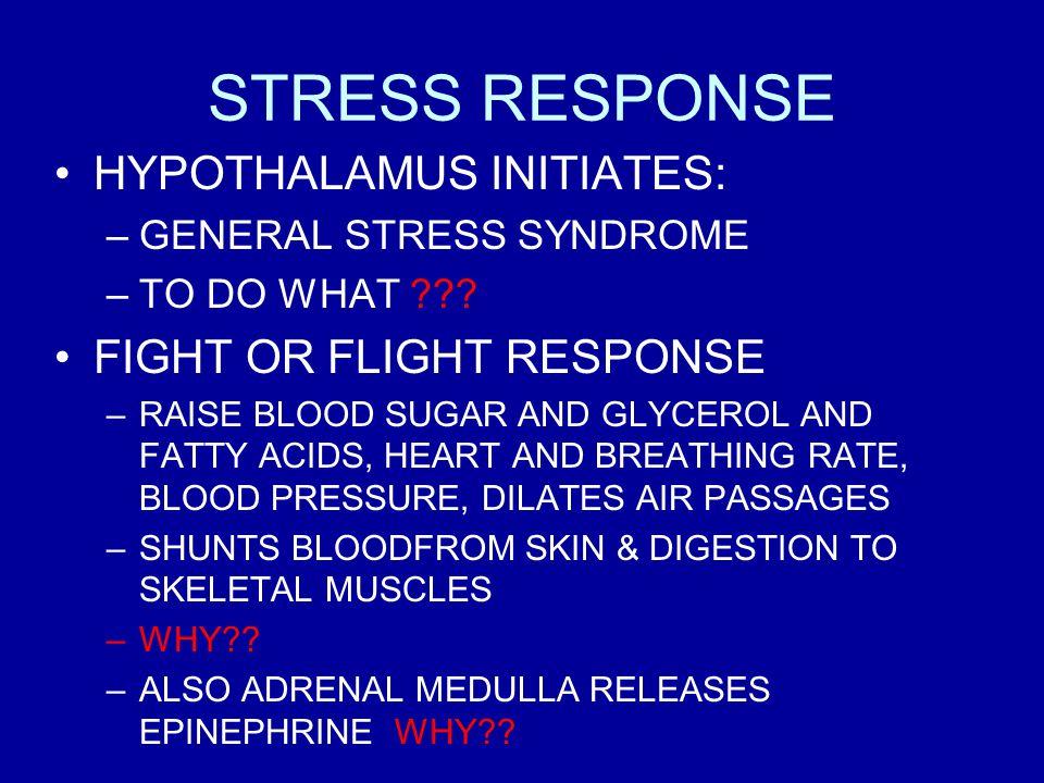 STRESS RESPONSE HYPOTHALAMUS INITIATES: –GENERAL STRESS SYNDROME –TO DO WHAT ??.