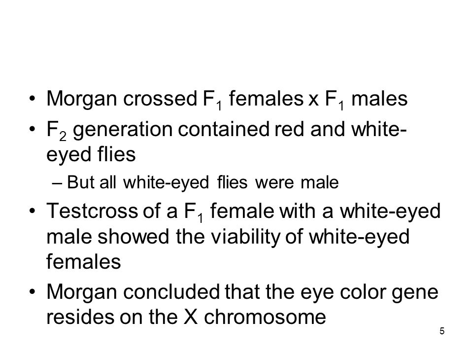36 Genomic imprinting Phenotype exhibited by a particular allele depends on which parent contributed the allele to the offspring Specific partial deletion of chromosome 15 results in –Prader-Willi syndrome if the chromosome is from the father –Angelman syndrome if it's from the mother