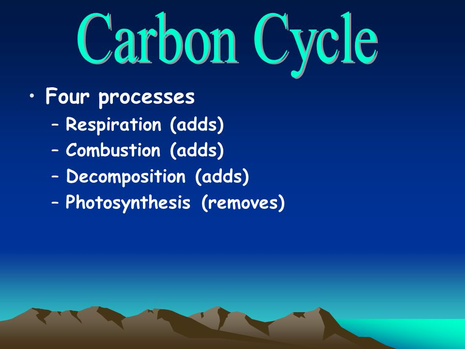 Four processes –Respiration (adds) –Combustion (adds) –Decomposition (adds) –Photosynthesis (removes)