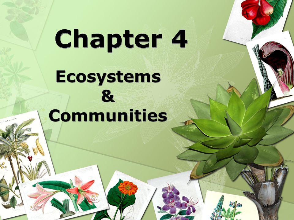 61 Chapter 4 Ecosystems & Communities Ecosystems & Communities
