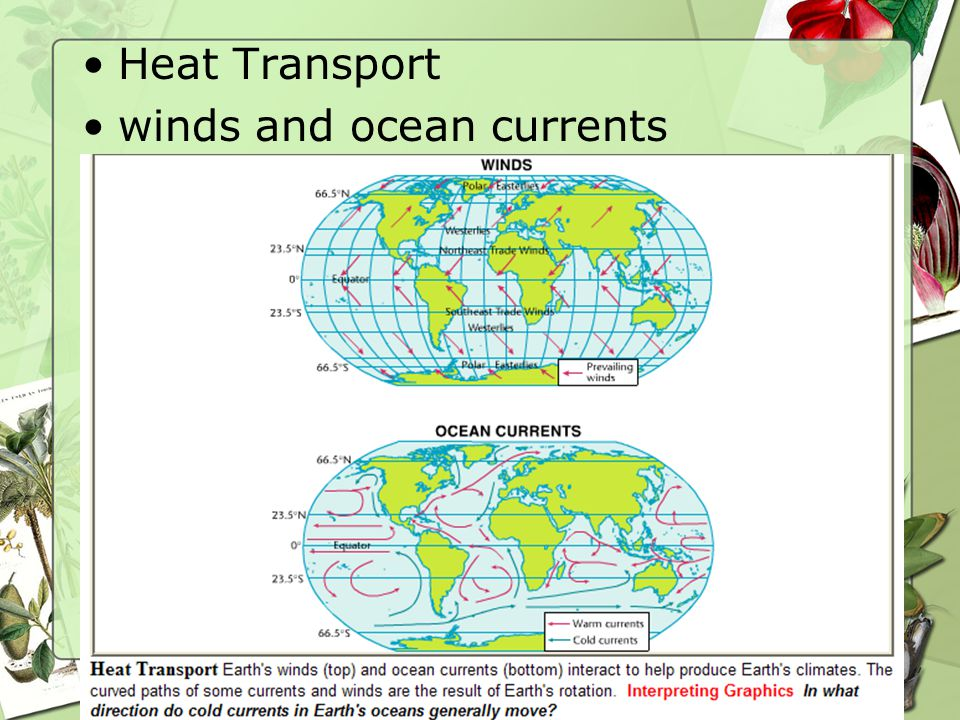 64 Heat Transport winds and ocean currents