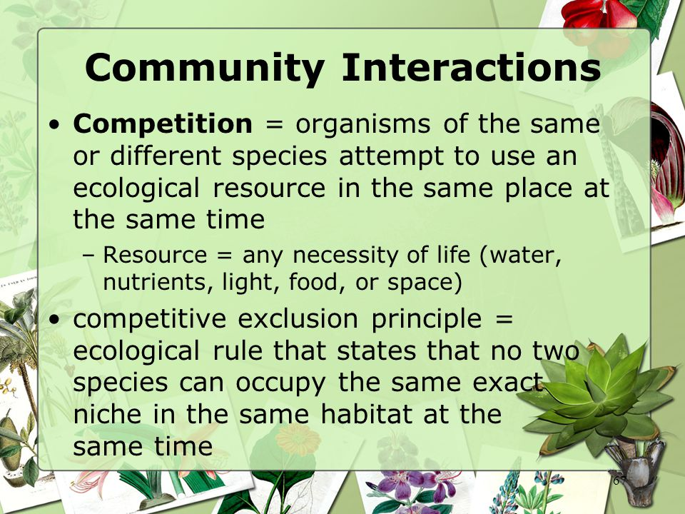 67 Community Interactions Competition = organisms of the same or different species attempt to use an ecological resource in the same place at the same