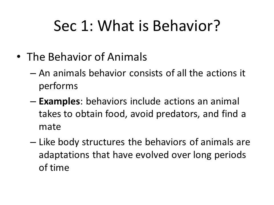 Sec 2: Patterns of Behavior Communication – Animals use mostly sounds, scents, and body movements to communicate with one another – An animals ability to communicate helps it interact with other animals – Animals communicate many kinds of messages using sound – Some animals use sound to attract mates Example: female crickets, are attracted to the sound of a male's chirping