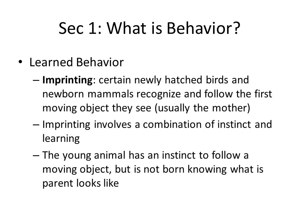 Sec 2: Patterns of Behavior Group Behavior – Living in groups enables animals to cooperate – Although many animals live alone and only rarely meet one of their own kind, other animals live in groups – Some fishes form schools, and some insects live in large groups – Hoofed mammals, such as bison and wild horses, often form herds