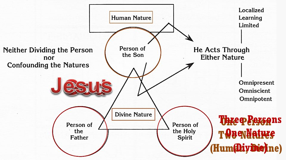 One Person Two Natures (Human, Divine) Three Persons One Nature (Divine )
