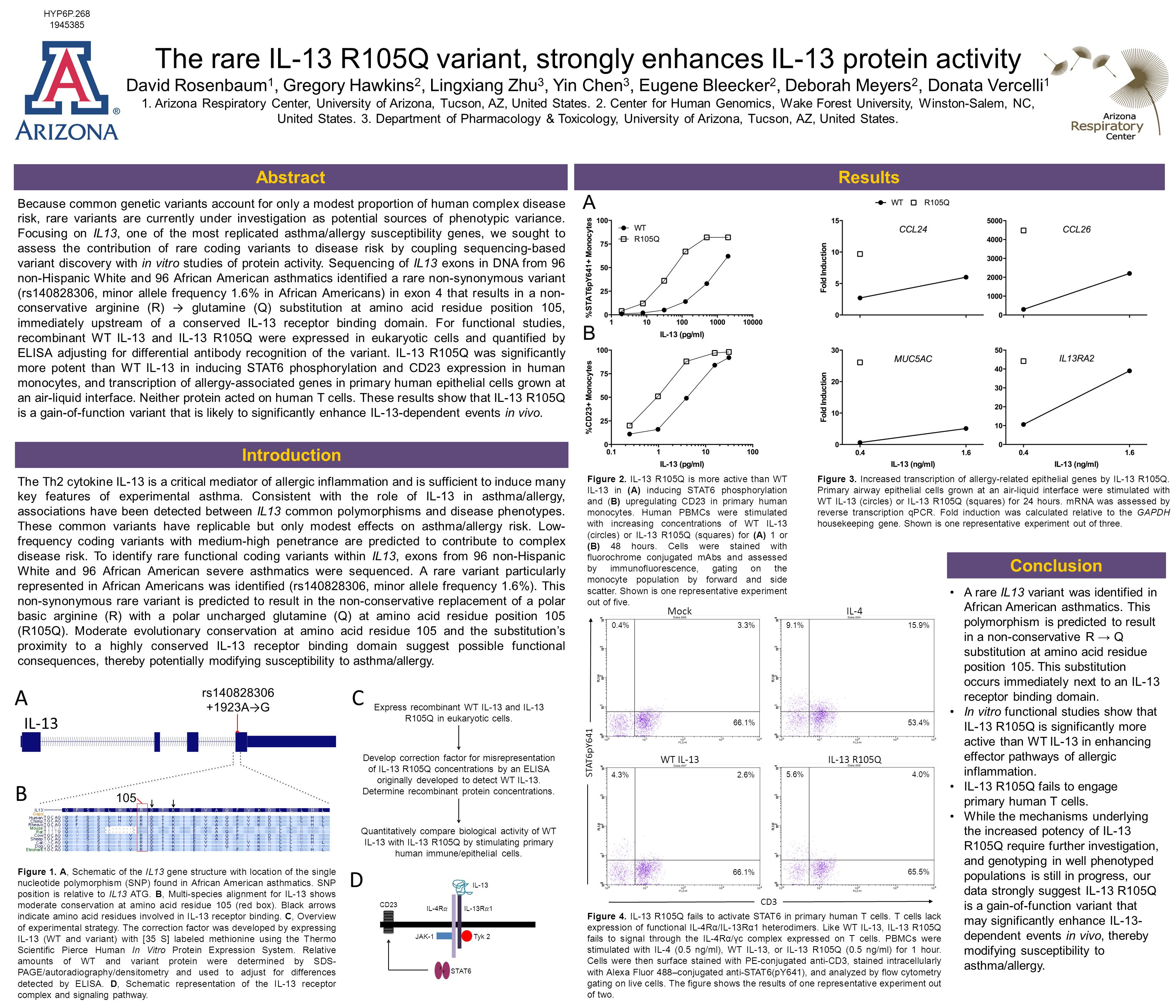 The rare IL-13 R105Q variant, strongly enhances IL-13 protein activity David Rosenbaum 1, Gregory Hawkins 2, Lingxiang Zhu 3, Yin Chen 3, Eugene Bleecker 2, Deborah Meyers 2, Donata Vercelli 1 1.