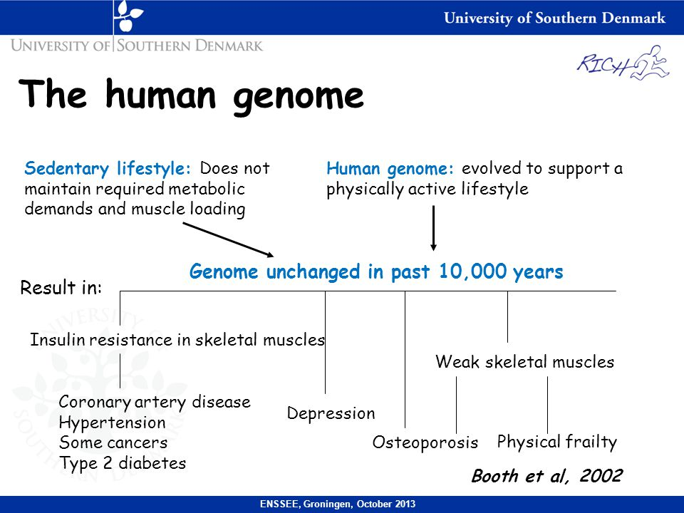 The human genome Sedentary lifestyle: Does not maintain required metabolic demands and muscle loading Human genome: evolved to support a physically active lifestyle Genome unchanged in past 10,000 years Insulin resistance in skeletal muscles Coronary artery disease Hypertension Some cancers Type 2 diabetes Depression Osteoporosis Weak skeletal muscles Physical frailty Booth et al, 2002 ENSSEE, Groningen, October 2013 Result in: