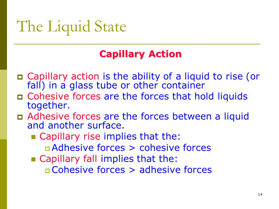 14 The Liquid State Capillary Action  Capillary action is the ability of a liquid to rise (or fall) in a glass tube or other container  Cohesive for