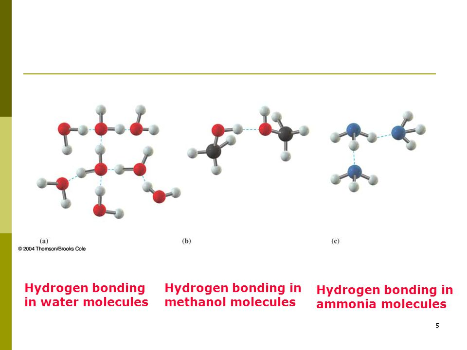 5 Hydrogen bonding in water molecules Hydrogen bonding in methanol molecules Hydrogen bonding in ammonia molecules