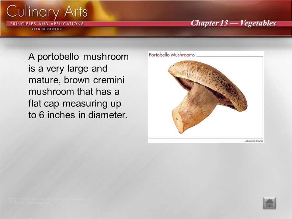 Chapter 13 — Vegetables A button mushroom has a very smooth, rounded cap and completely closed gills atop a short stem.