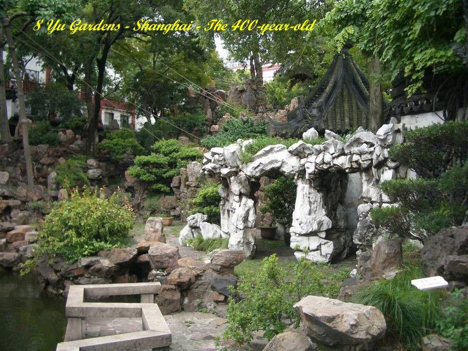 7 Kirstenbosch Botanical Gardens