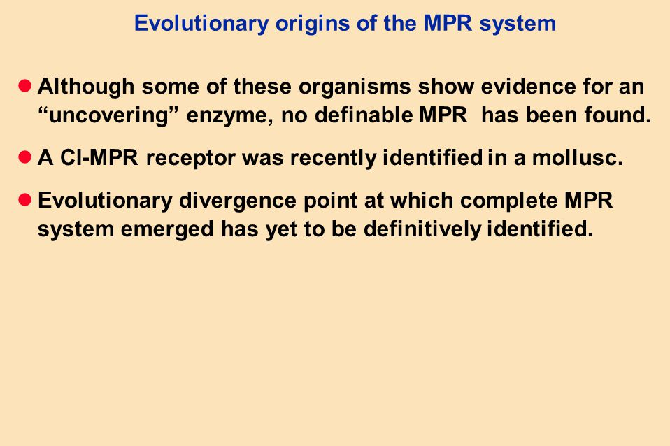 Evolutionary origins of the MPR system Although some of these organisms show evidence for an uncovering enzyme, no definable MPR has been found.