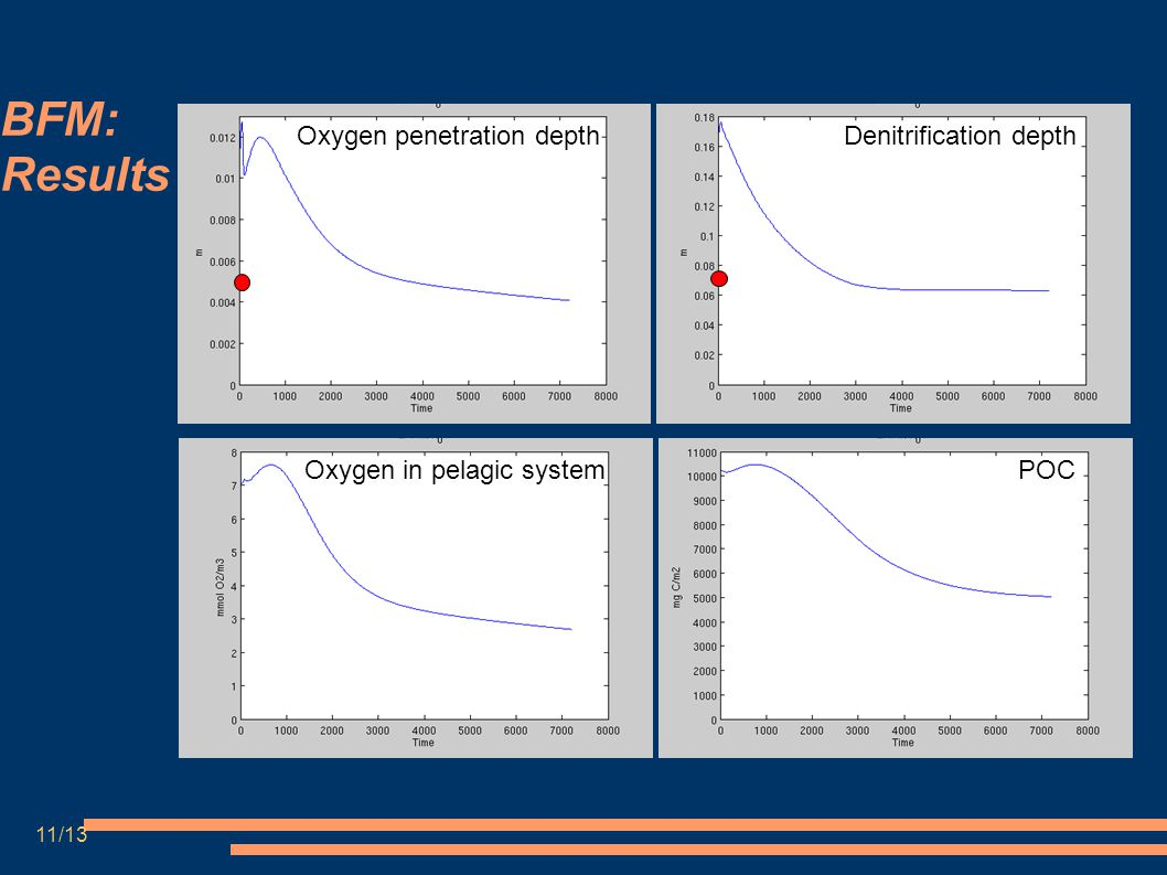 BFM: Results Oxygen penetration depthDenitrification depth Oxygen in pelagic systemPOC 11/13