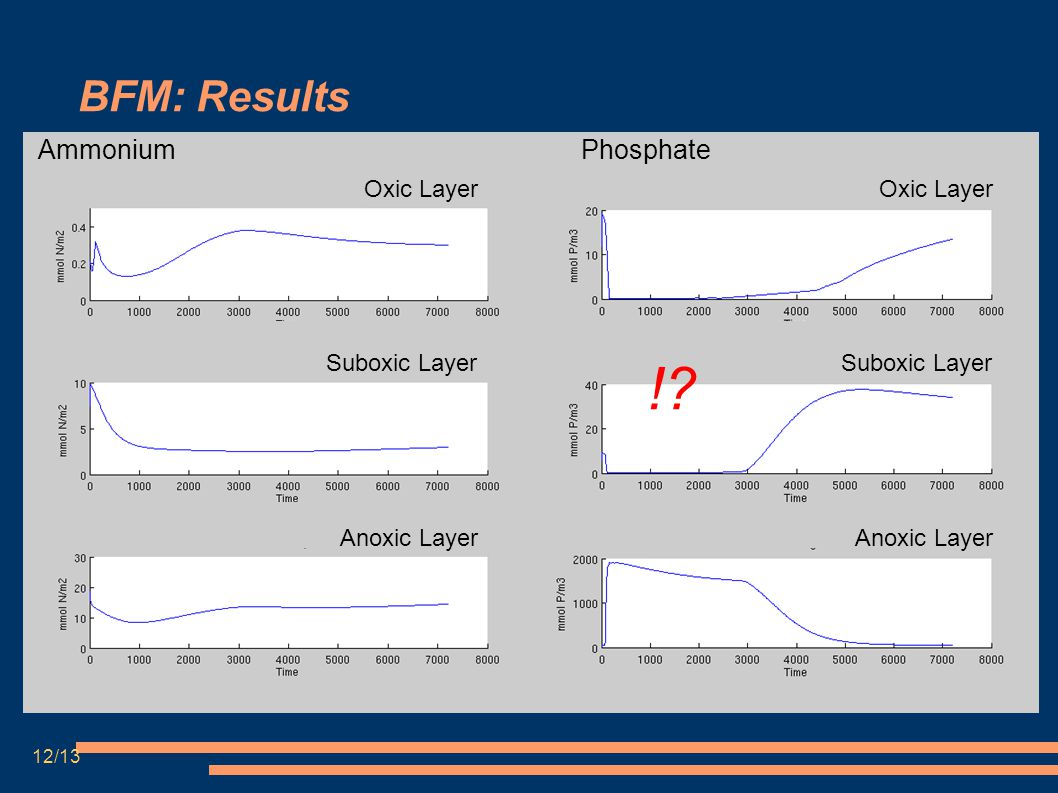BFM: Results Ammonium Oxic Layer Suboxic Layer Anoxic Layer Phosphate !.