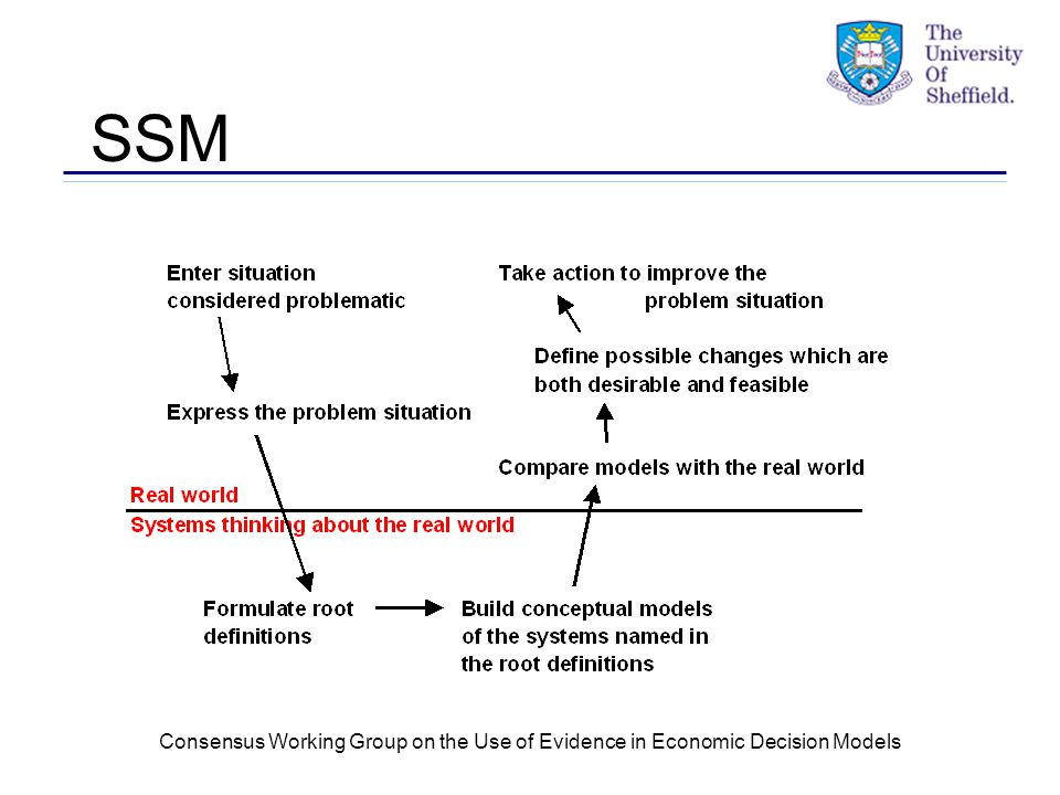 Consensus Working Group on the Use of Evidence in Economic Decision Models SSM