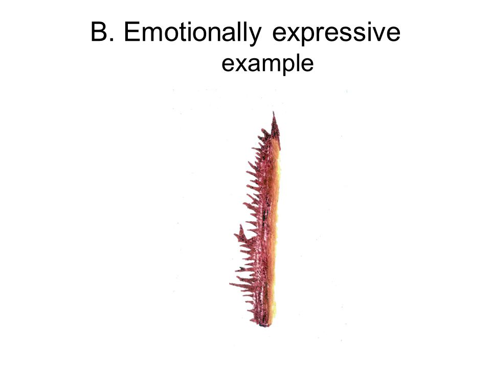 B. Emotionally expressive example