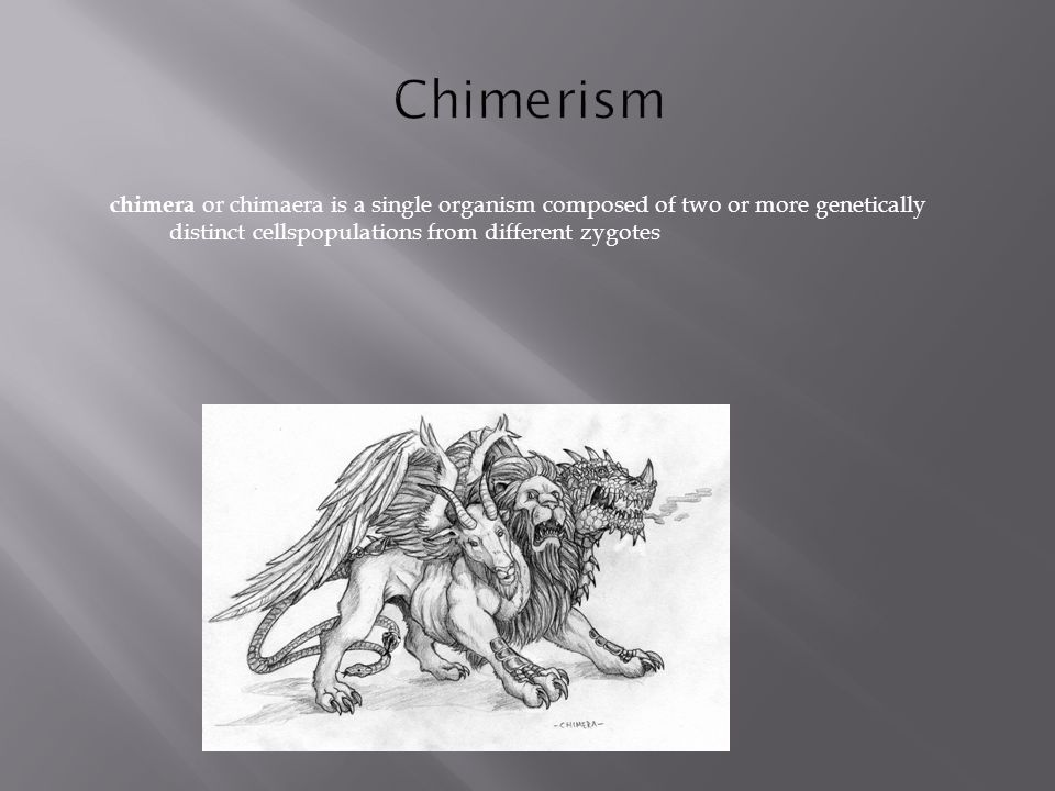 chimera or chimaera is a single organism composed of two or more genetically distinct cellspopulations from different zygotes