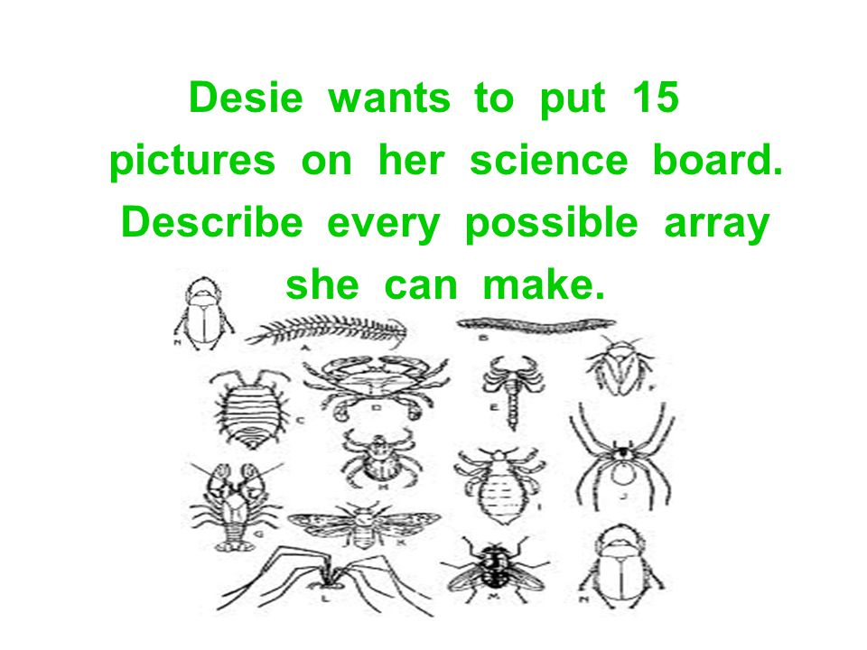 Desie wants to put 15 pictures on her science board. Describe every possible array she can make.