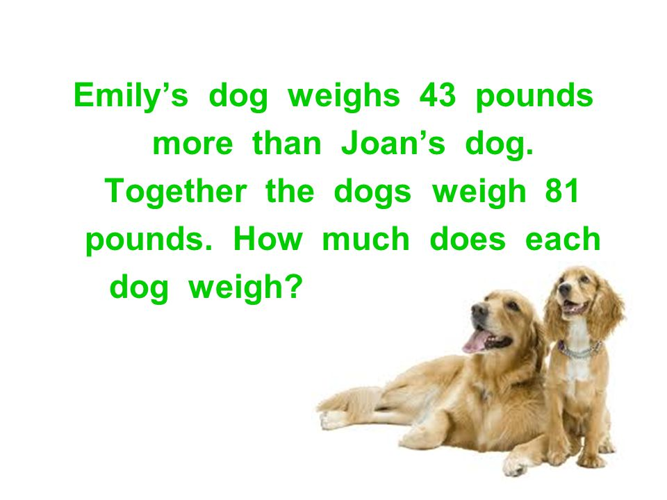 Emily's dog weighs 43 pounds more than Joan's dog. Together the dogs weigh 81 pounds. How much does each dog weigh?