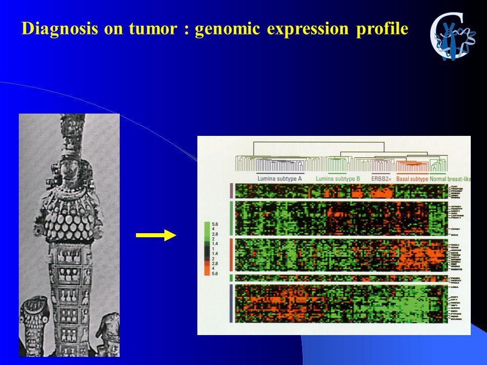 Diagnosis on tumor : genomic expression profile