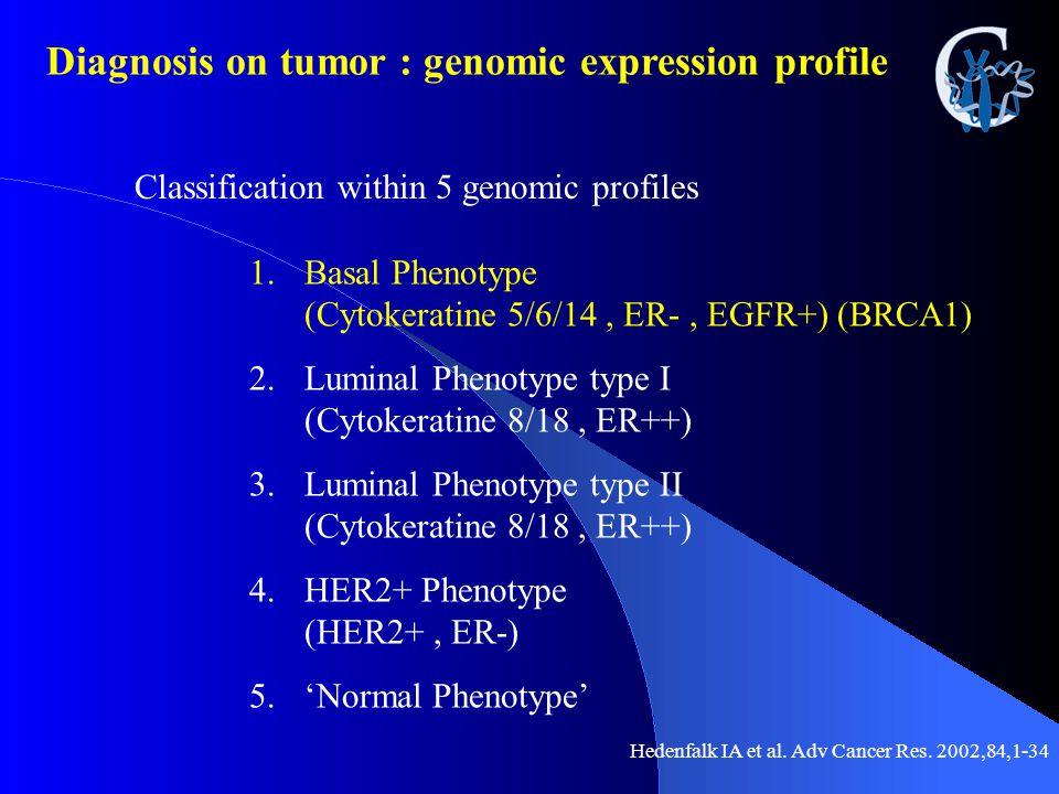 Classification within 5 genomic profiles 1.Basal Phenotype (Cytokeratine 5/6/14, ER-, EGFR+) (BRCA1) 2.Luminal Phenotype type I (Cytokeratine 8/18, ER