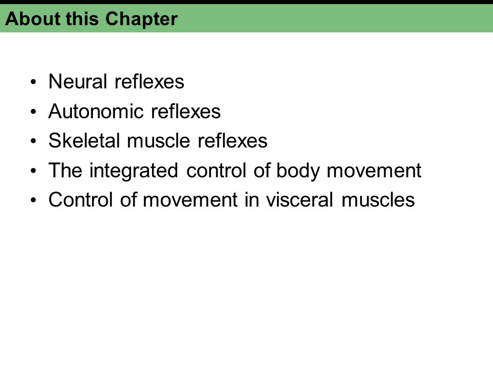 About this Chapter Neural reflexes Autonomic reflexes Skeletal muscle reflexes The integrated control of body movement Control of movement in visceral