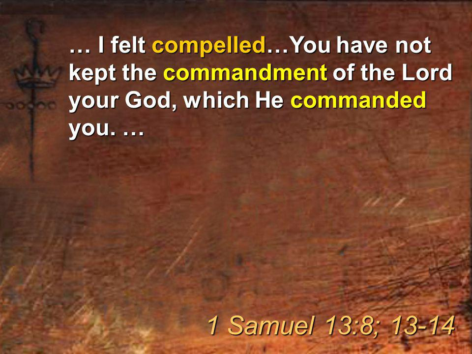… I felt compelled…You have not kept the commandment of the Lord your God, which He commanded you.