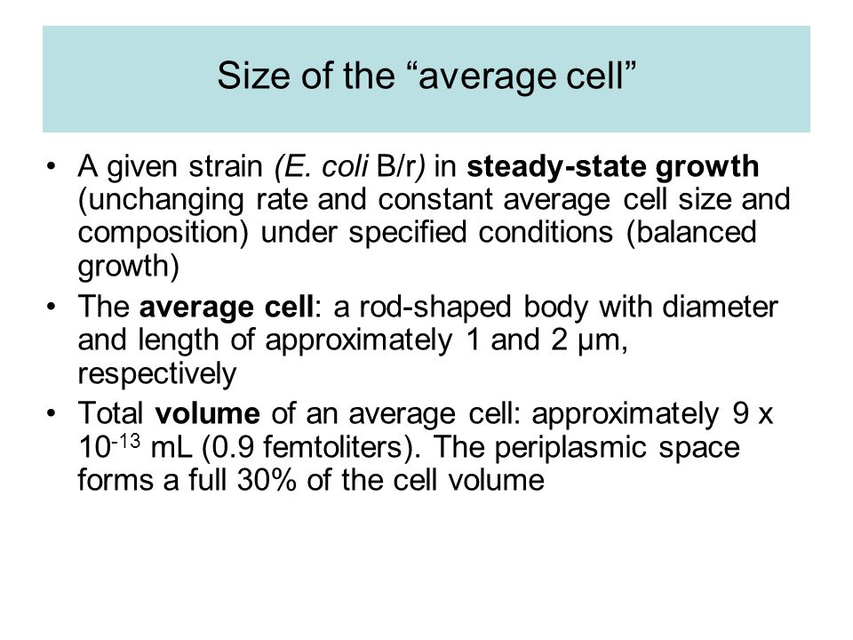 Meaning of the average cell Approximately 44% along the cell cycle in age Approximately 33% larger than when it was born (If individual cells increase in mass exponentially) The idealized frequency distribution (relative number of cells) of cell age in a steady-state culture increasing by binary fission is given by f(x) = 2 1-x, where x is the age of cells measured on the scale from 0 to 1 cell generation time