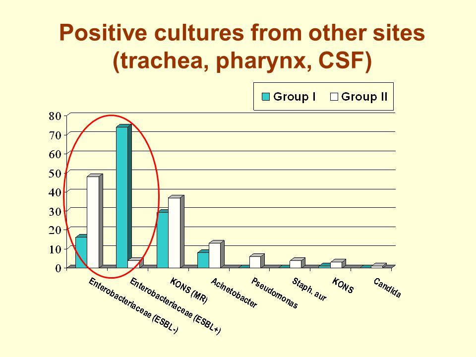 Positive cultures from other sites (trachea, pharynx, CSF)
