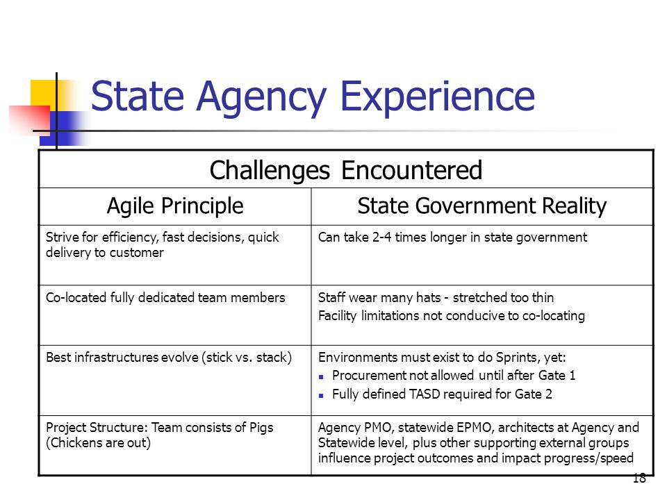 18 State Agency Experience Challenges Encountered Agile PrincipleState Government Reality Strive for efficiency, fast decisions, quick delivery to customer Can take 2-4 times longer in state government Co-located fully dedicated team membersStaff wear many hats - stretched too thin Facility limitations not conducive to co-locating Best infrastructures evolve (stick vs.