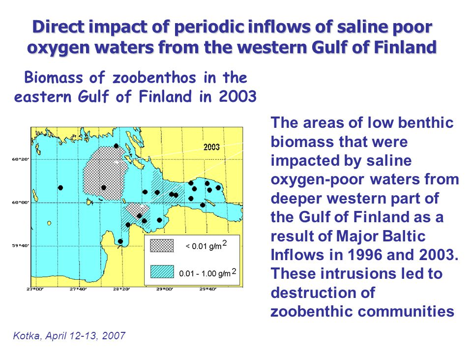 Biomass of zoobenthos in the eastern Gulf of Finland in 2003 The areas of low benthic biomass that were impacted by saline oxygen-poor waters from deeper western part of the Gulf of Finland as a result of Major Baltic Inflows in 1996 and 2003.