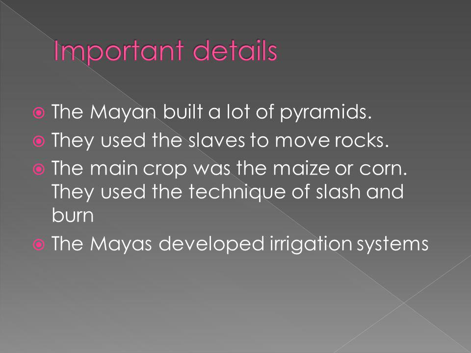  The Mayan built a lot of pyramids.  They used the slaves to move rocks.