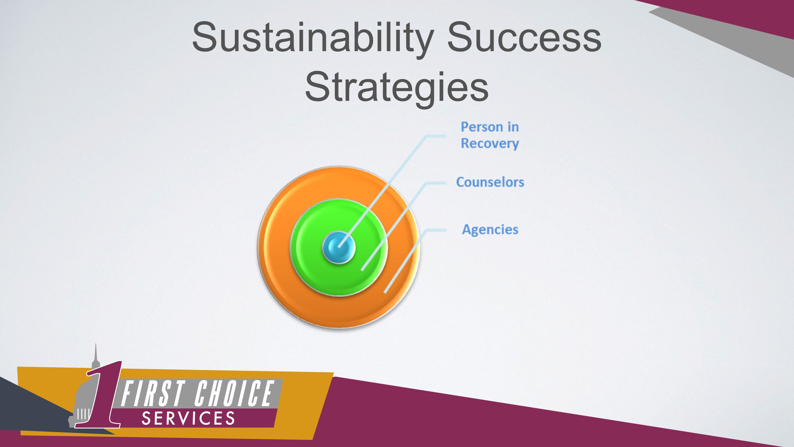 Sustainability Success Strategies