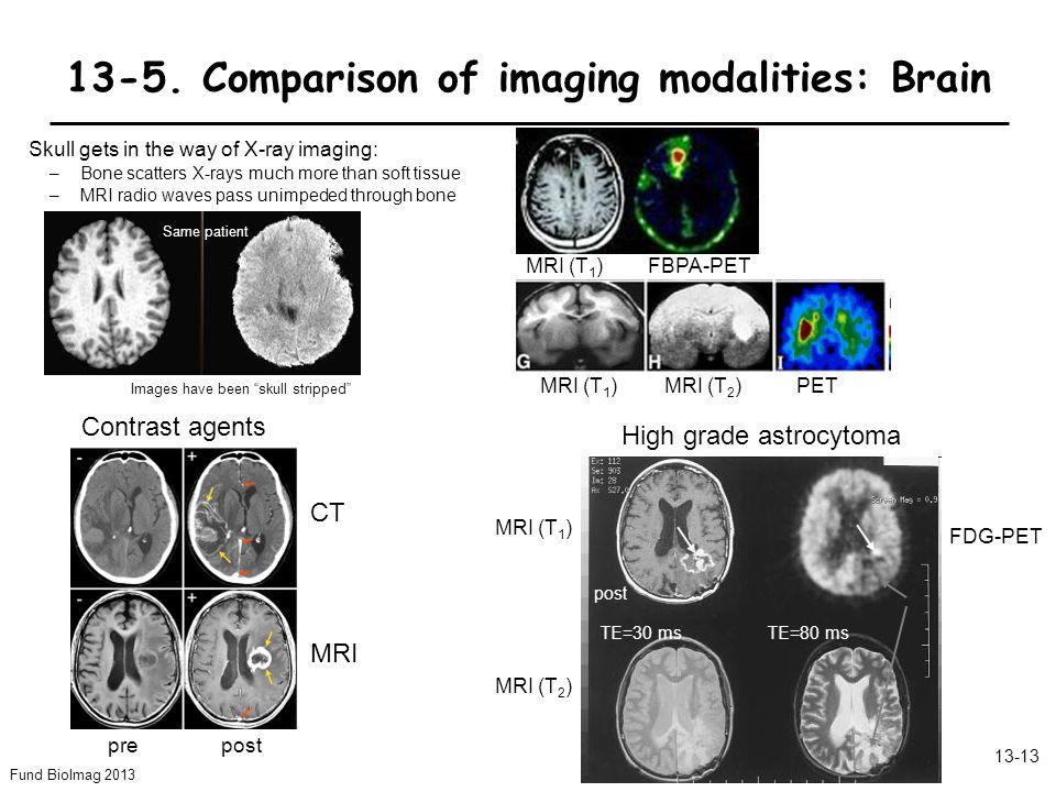 Fund BioImag 2013 13-13 13-5.