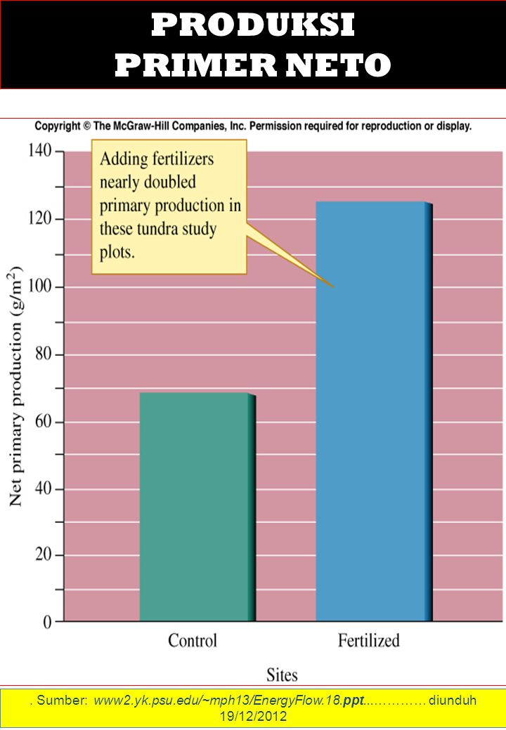 . Sumber: www2.yk.psu.edu/~mph13/EnergyFlow.18.ppt...………… diunduh 19/12/2012 PRODUKSI PRIMER NETO