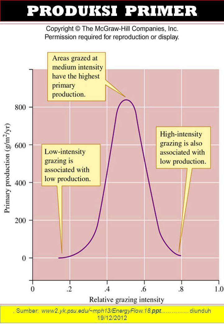 . Sumber: www2.yk.psu.edu/~mph13/EnergyFlow.18.ppt...………… diunduh 19/12/2012 PRODUKSI PRIMER