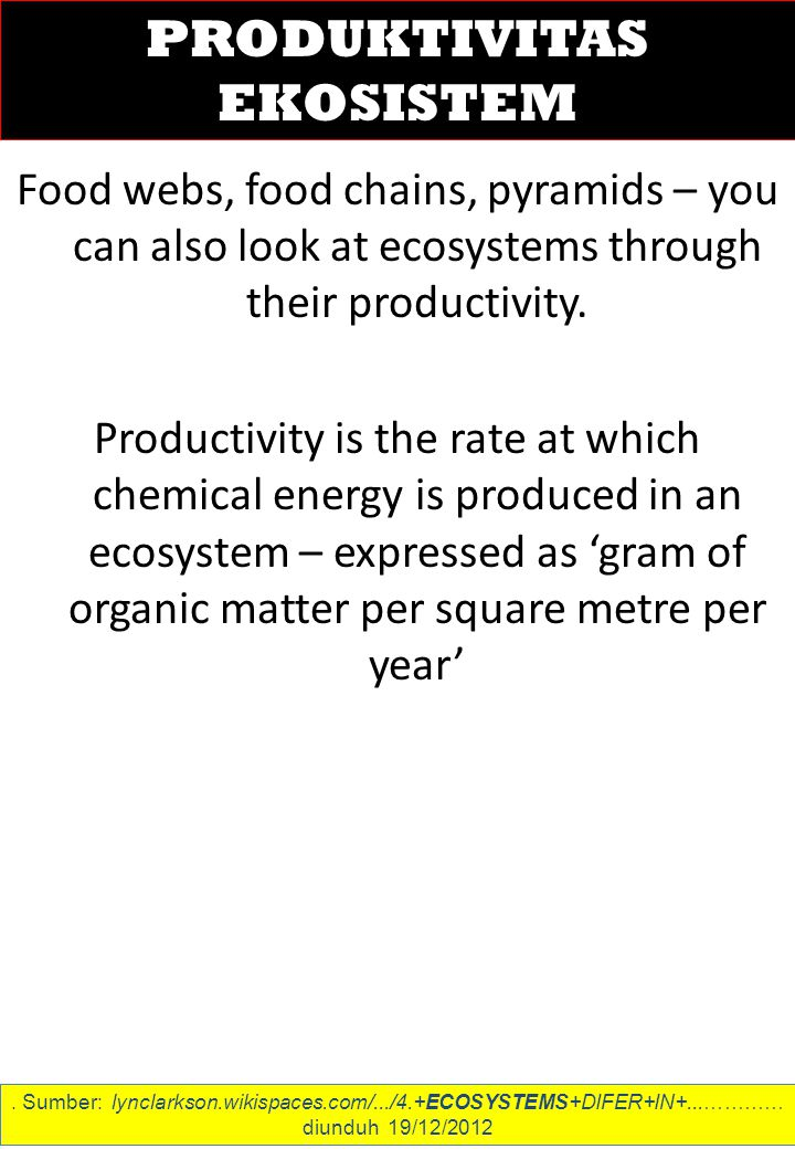 Food webs, food chains, pyramids – you can also look at ecosystems through their productivity.
