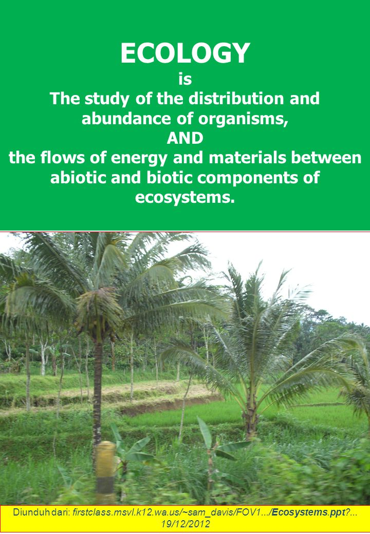ECOLOGY is The study of the distribution and abundance of organisms, AND the flows of energy and materials between abiotic and biotic components of ecosystems.