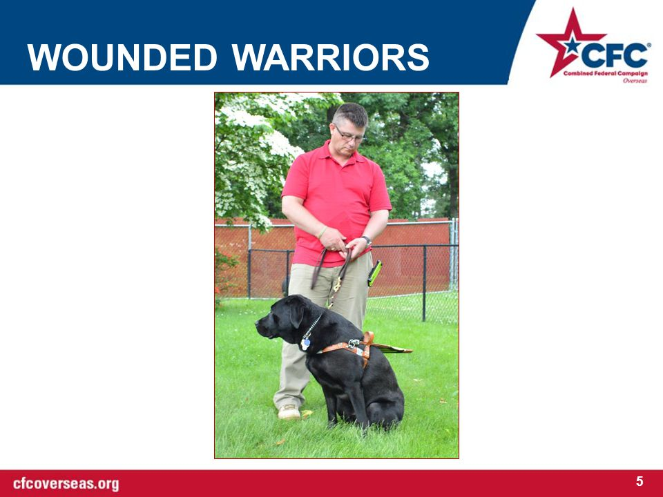 WOUNDED WARRIORS 5