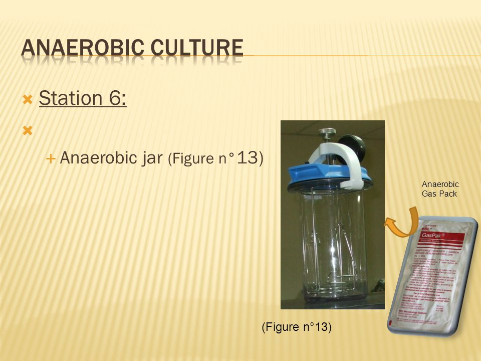  Station 6:   Anaerobic jar (Figure n° 13) (Figure n°13) Anaerobic Gas Pack
