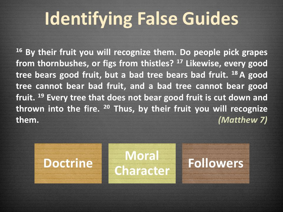 Guarding Against False Guides God's Word God's Voice