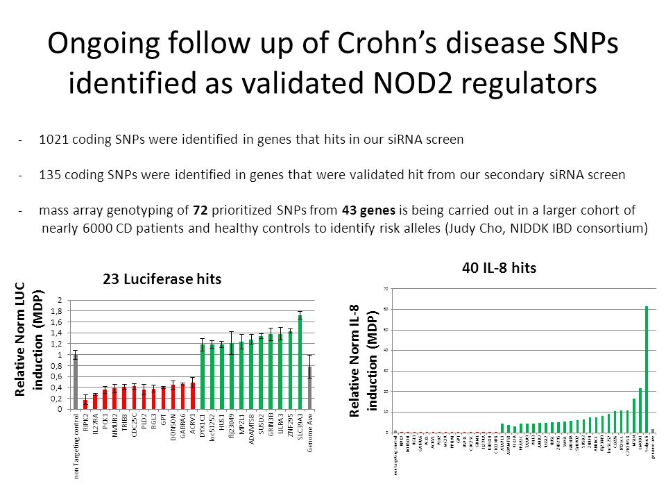 Ongoing follow up of Crohn's disease SNPs identified as validated NOD2 regulators -1021 coding SNPs were identified in genes that hits in our siRNA screen -135 coding SNPs were identified in genes that were validated hit from our secondary siRNA screen -mass array genotyping of 72 prioritized SNPs from 43 genes is being carried out in a larger cohort of nearly 6000 CD patients and healthy controls to identify risk alleles (Judy Cho, NIDDK IBD consortium)