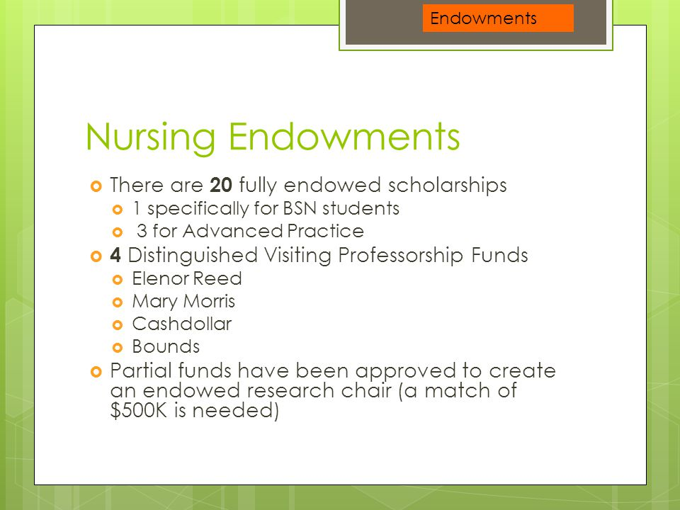 Nursing Endowments  There are 20 fully endowed scholarships  1 specifically for BSN students  3 for Advanced Practice  4 Distinguished Visiting Pr
