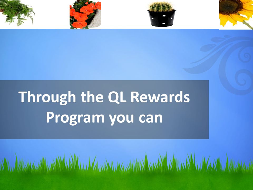 Through the QL Rewards Program you can