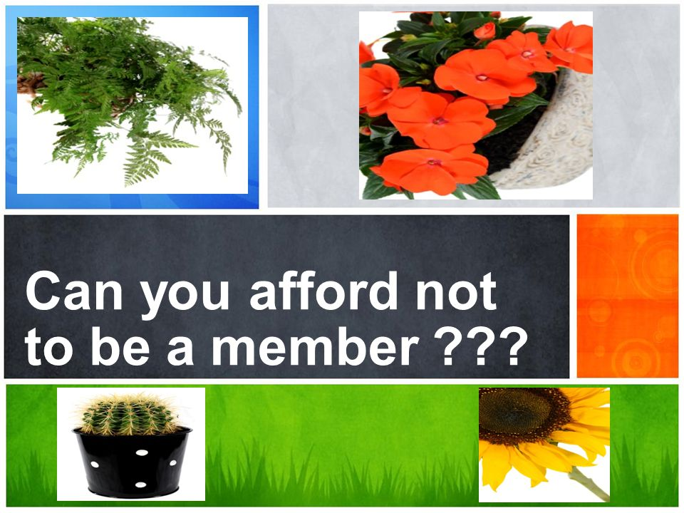Can you afford not to be a member ???