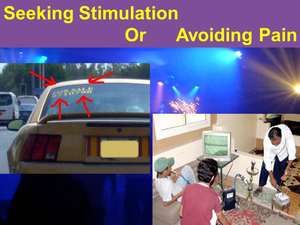 33 Seeking Stimulation Or Avoiding Pain