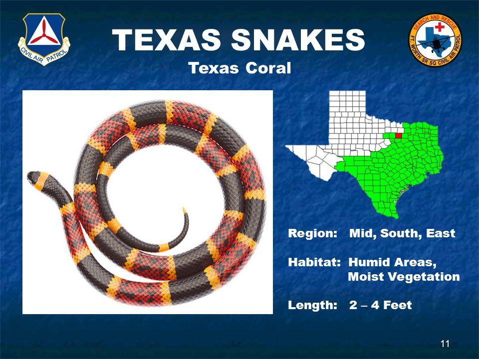 TEXAS SNAKES 11 Texas Coral Region: Mid, South, East Habitat: Humid Areas, Moist Vegetation Length: 2 – 4 Feet