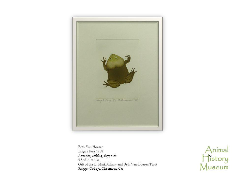 Beth Van Hoesen Bruget's Frog, 1988 Aquatint, etching, drypoint 5 5/8 in.