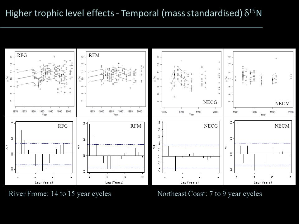 Higher trophic level effects - Temporal (mass standardised)  15 N River Frome: 14 to 15 year cyclesNortheast Coast: 7 to 9 year cycles NECGNECM NECG