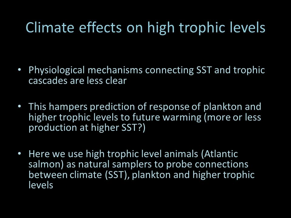 Climate effects on high trophic levels Physiological mechanisms connecting SST and trophic cascades are less clear This hampers prediction of response